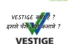 Vestige क्या है? Vestige के फायदे और नुक्सान ?