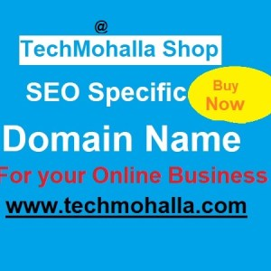 SEO Specific Domain Name
