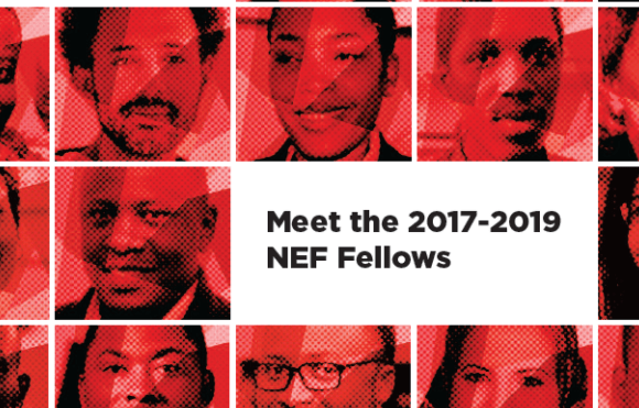 See the List of 2017-2019 Next Einstein Forum Fellows, Africa's Top Scientists Solving Global Challenges