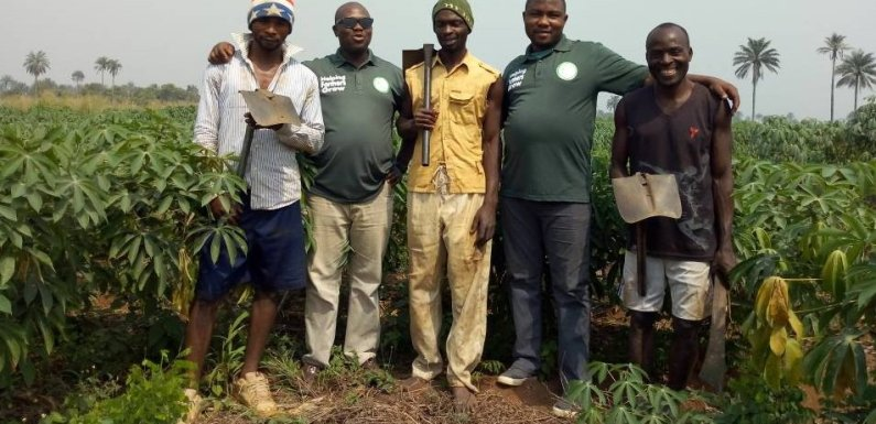Interview: Is ProbityFarms the best thing that happened to Smallholder farmers?