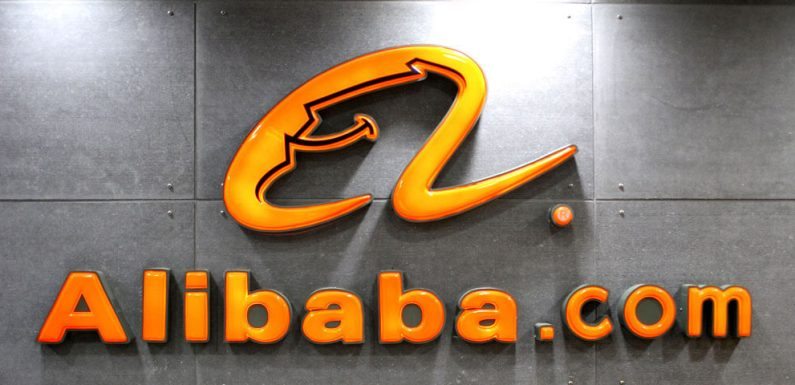 Alibaba to aid in Kenya's quest to conserve its wildlife