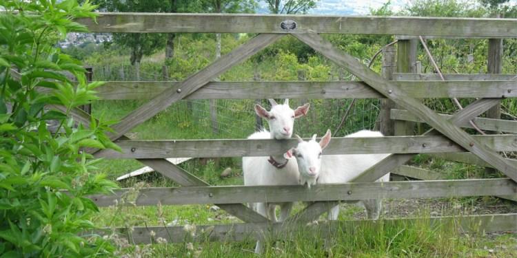 cronkshaw-fold-farm-lancashire-1-915px