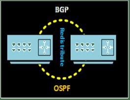 Redistribute BGP and ospf