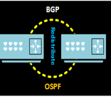 Redistribute BGP and ospf