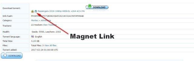torrent magnet link movies