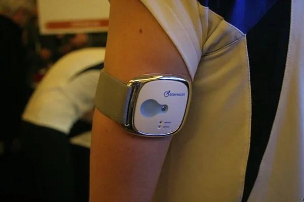 bodymedia fit armband sensor weight management health