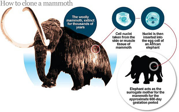 woolly mammoth cloning technology jurassic park