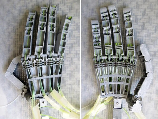 anthromod articulated 3d printed robotic hand
