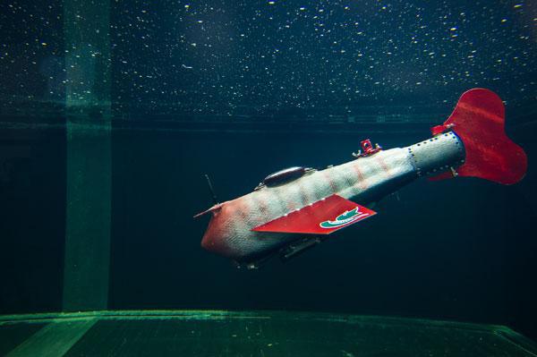 grace robotic fish