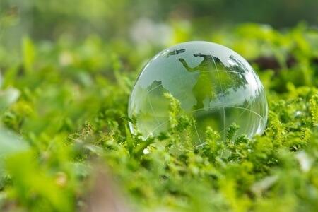 KW 51: Technewable News Shots - Grüne Welt
