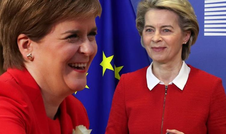 EU 'will' allow Sturgeon's independent Scotland in: 'This is nothing like Catalonia' | UK | News