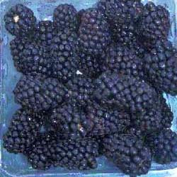 Blackberries (USDA)