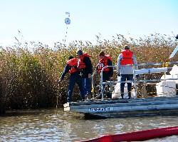 Deepwater Horizon response (U.S. Coast Guard)