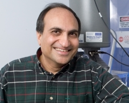 Rajesh Dave (Kai Chan/New Jersey Institute of Technology)