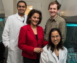 L-R: Vivek Kumar, Rena D'Souza, Jeffrey Hartgerink, and Marci Kang. (Jeff Fitlow/Rice University)