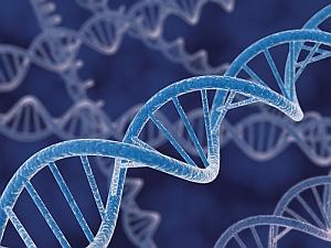 DNA Strands (NIST.gov)