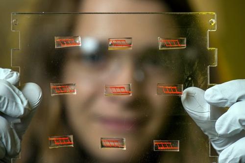 3-D printed blood vessel components