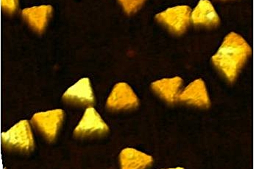 Triangular gold nanoparticles