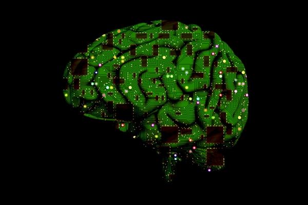 Brain circuits illustration