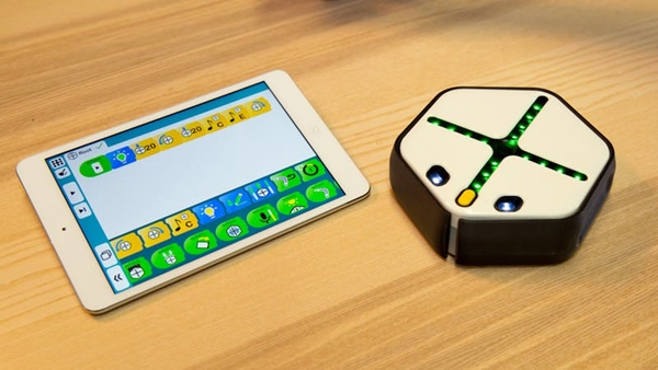 Root tablet and robot