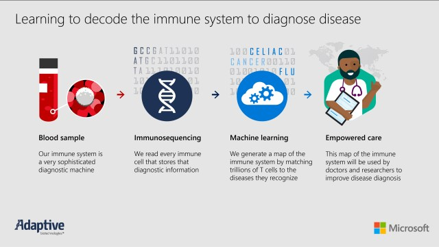 Immuno-sequencing infographic