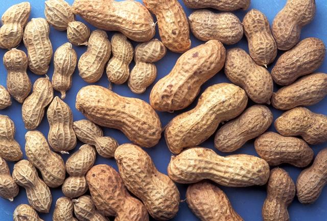 Peanutes in shells
