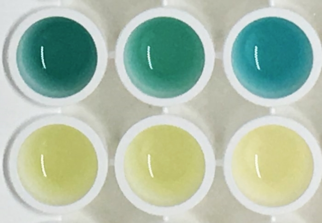 Mouse urine samples