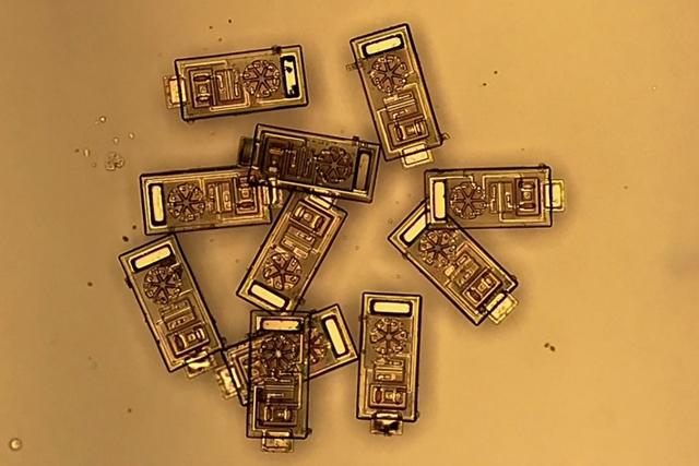 OWIC sensors