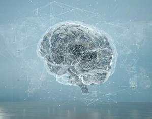 How Marketing Campaigns Mirror AI Learning And The Human Brain
