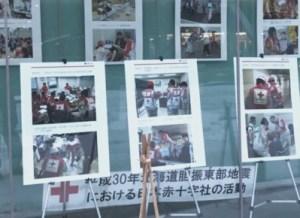 日本赤十字社北海道支部の活動の様子