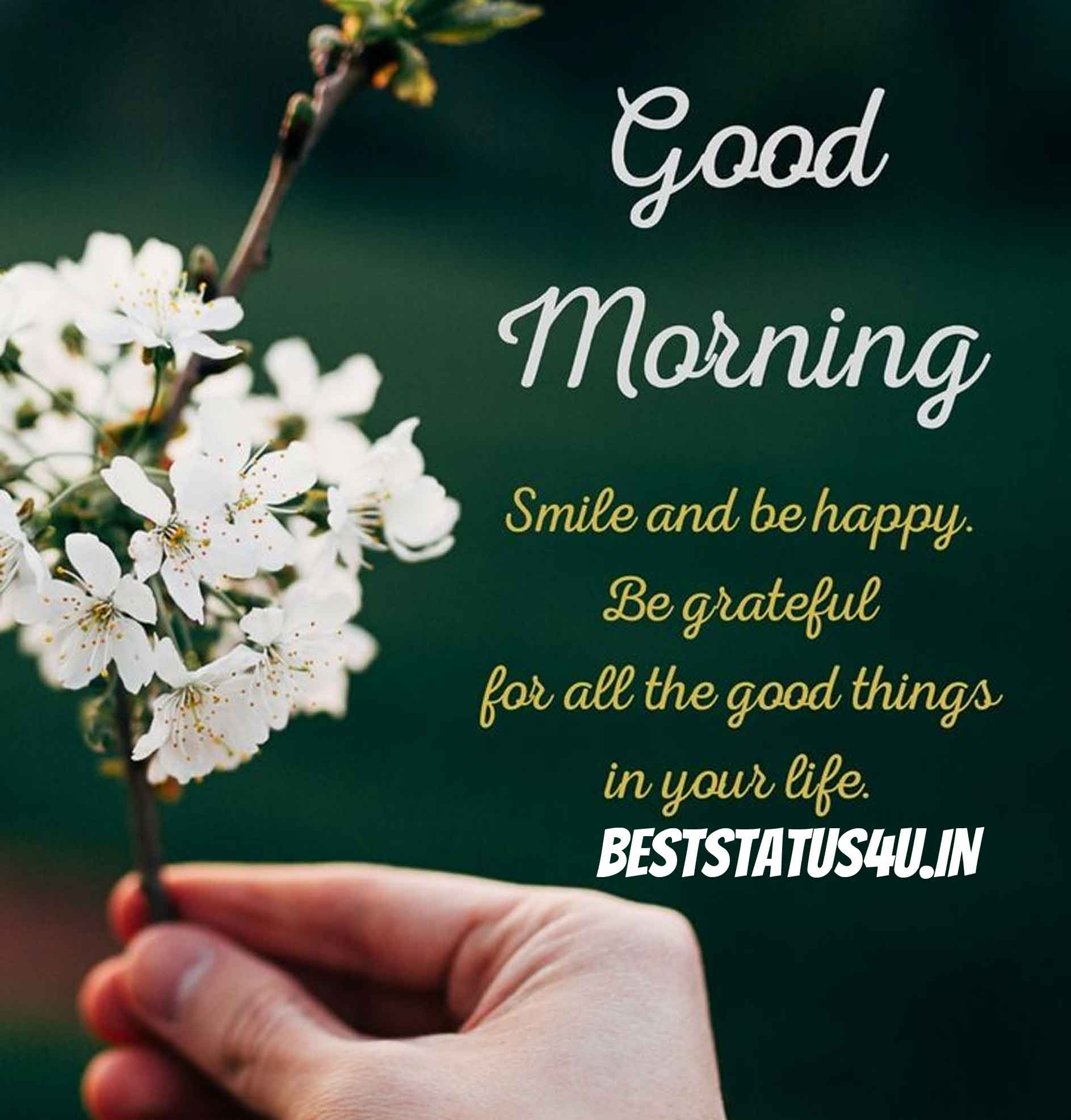 Beautiful Morning Status Messages For Whatsapp Status