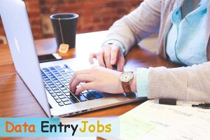 15 Data Entry Jobs from home without investment online/ offline in Hindi