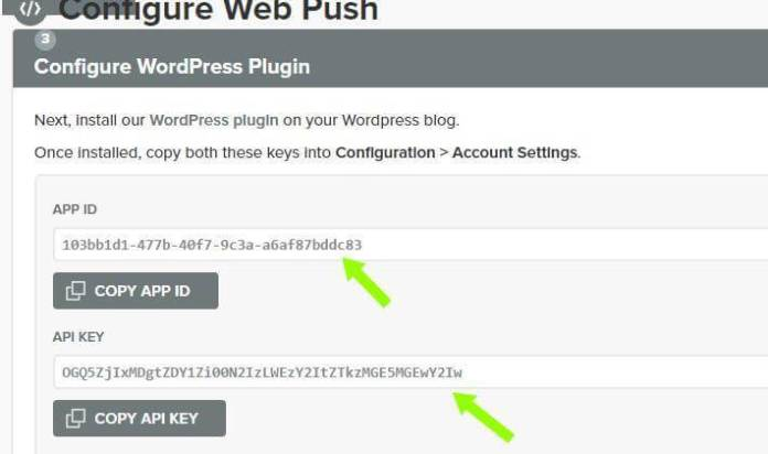 WordPress Website में Free Web Push Notification Service कैसे सेट करे,Wordpress Website Me Web Push Notification Kaise Enable Kare,Web Push Notifications
