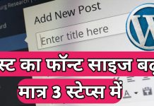 How To Change Paragraph Font Size on WordPress in Hindi