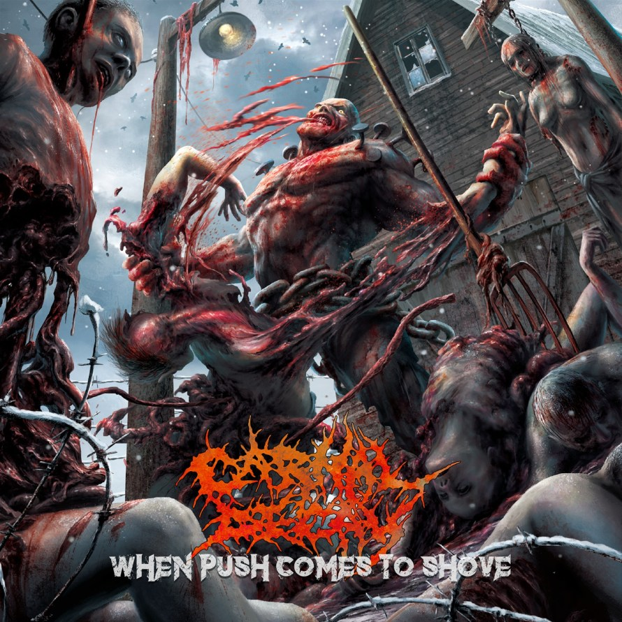Carnal Decay - When Pushes Comes To Shove. Cover Art