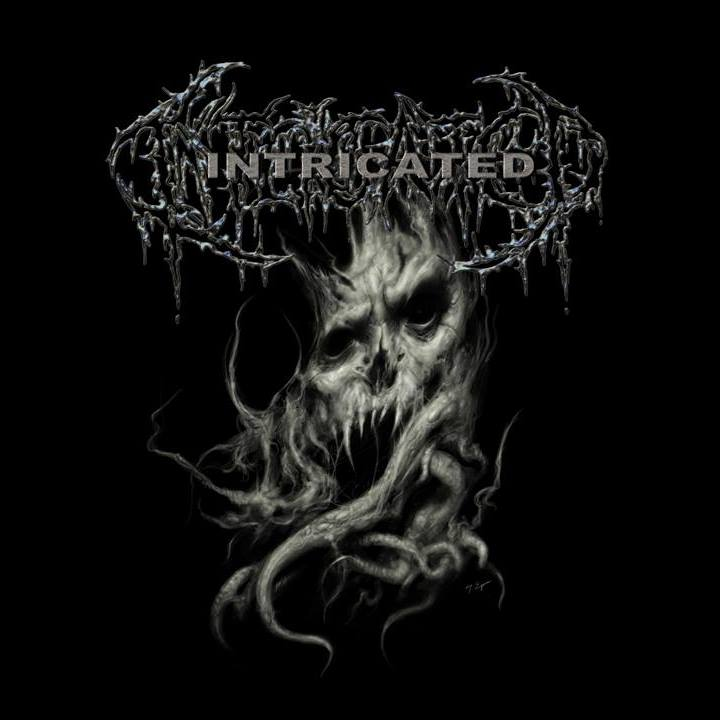 """Intricated Official Song Premiere for """"Flagitious Meditation"""""""