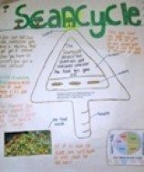 Food Waste prevention - ScanCycle
