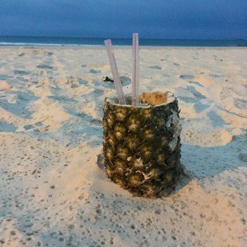 Pineapple and plastic straw