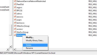 Delete WinSnare virus from registry