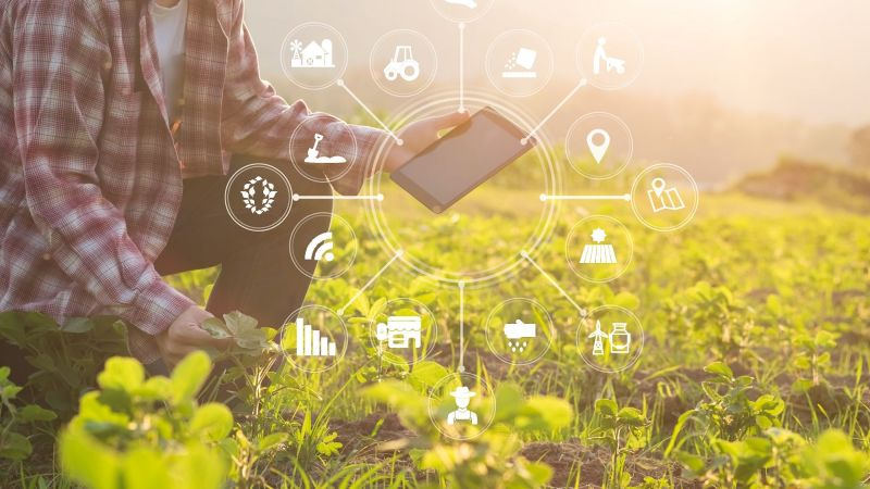 Breaking the Digital Frontier in Agriculture With Mobile App