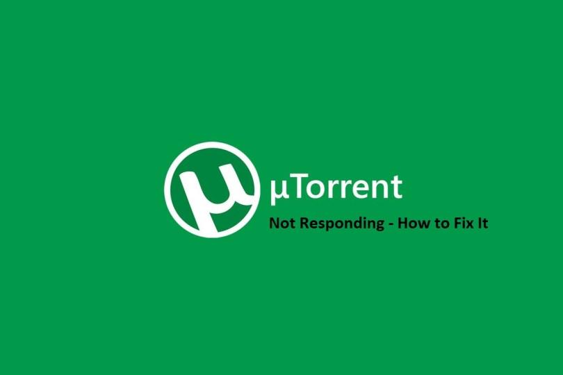 uTorrent Not Responding