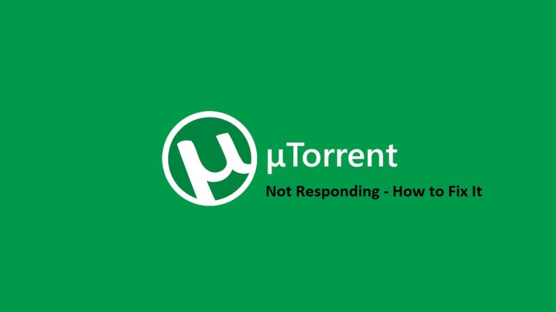 Is your uTorrent Not Responding? Here are some quick fixes!