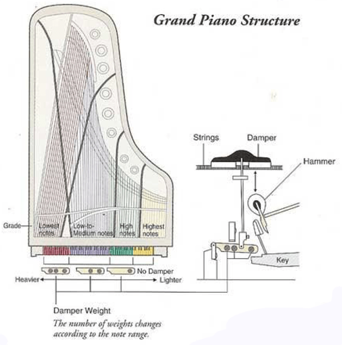 TECHNICS P50 GRAND PIANO STRUCTURE.png