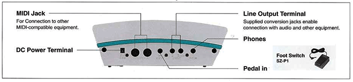 TECHNICS P50 PIANO INPUTS AND OUTPUTS.png