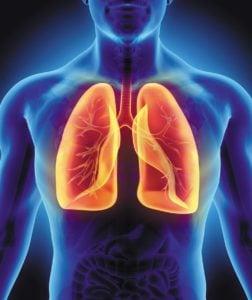 płuca 252x300 - Płuca (terapie kwantowe)