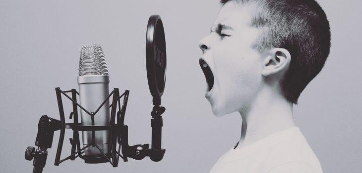 Voix dévoiléeQue dévoile la voix Technik Vox Véronik Carrier