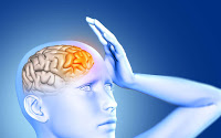 cerveau et sons