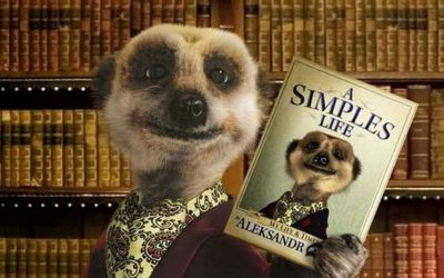 Am I the only person who doesn't think the meerkats are great?