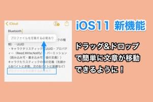 iOS11の新機能 メモ帳アプリなどで文章の移動がドラッグ&ドロップでできるように!