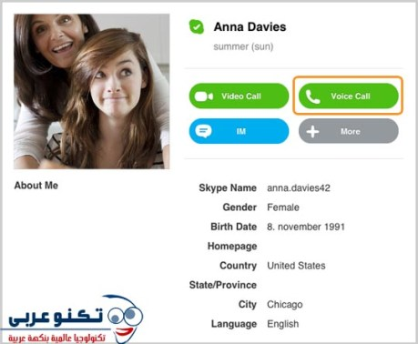 skype voice call 01 copy